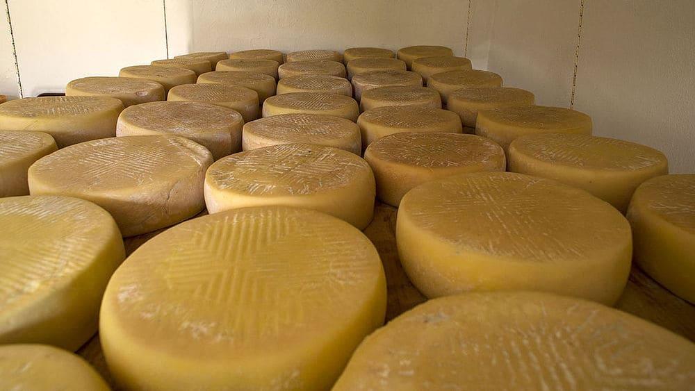 Productos canarios: queso de Guía de Gran Canaria