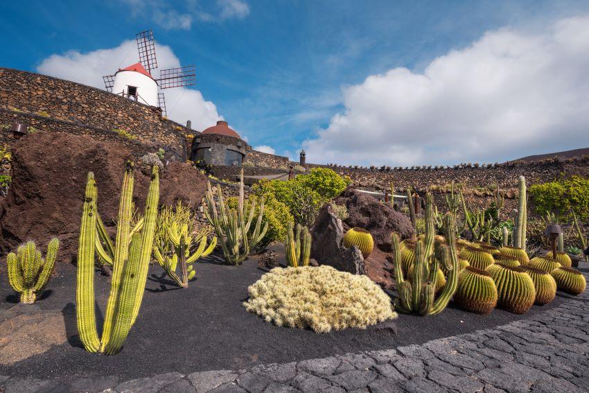 Imagen del Jardín de Cactus de Lanzarote, por Marca Canaria
