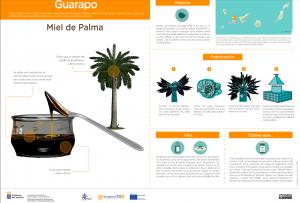 Infografía de la Miel de Palma