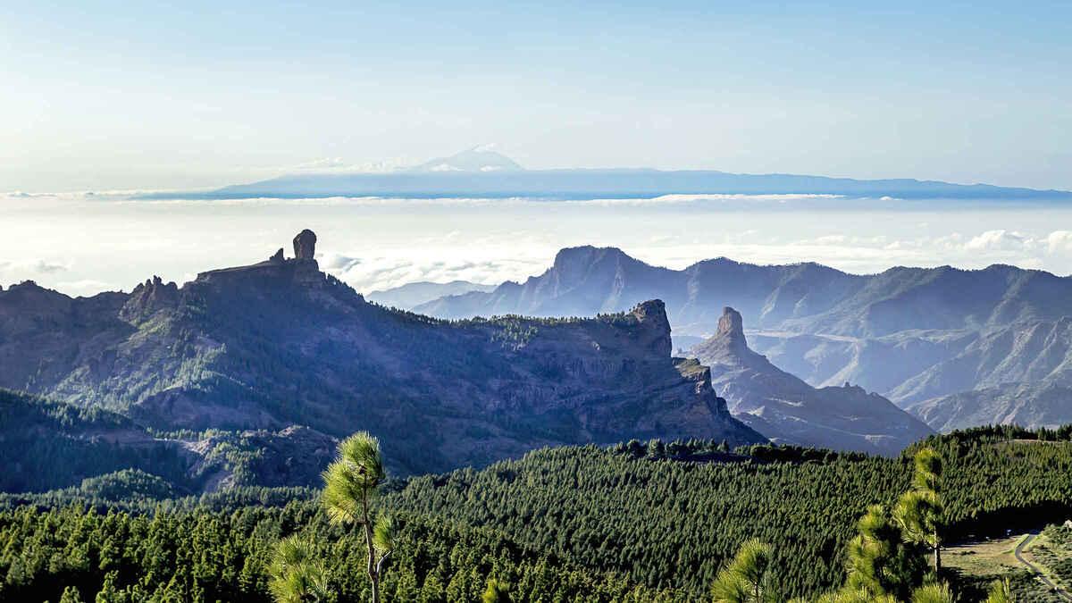 Mirador Pico de las Nieves